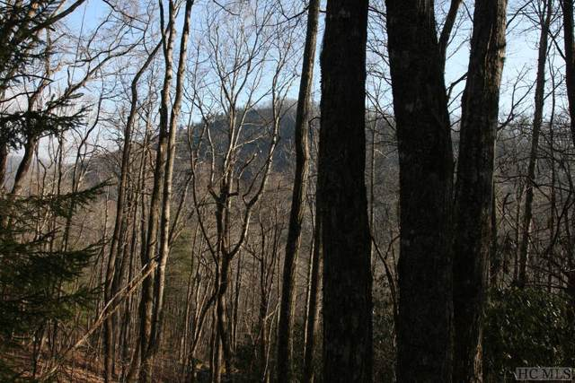 TR2 Sassafras Ridge, Sapphire, NC 28774 (MLS #92776) :: Berkshire Hathaway HomeServices Meadows Mountain Realty