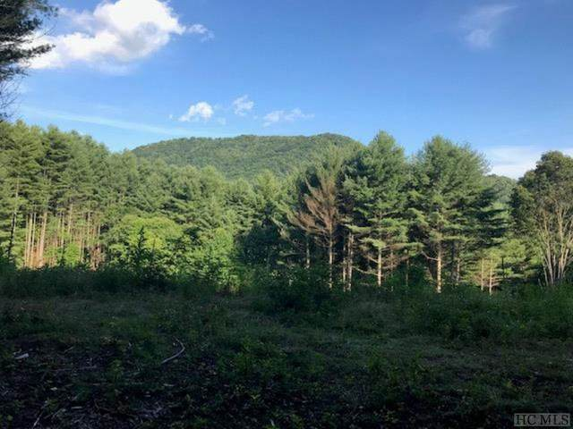 0 Fork Mountain Road, Out Of Area, NC 28705 (MLS #92835) :: Pat Allen Realty Group