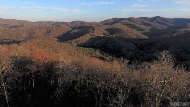 200 Wintergreen Patch Lane, Out Of Area, NC 28714 (MLS #92849) :: Pat Allen Realty Group