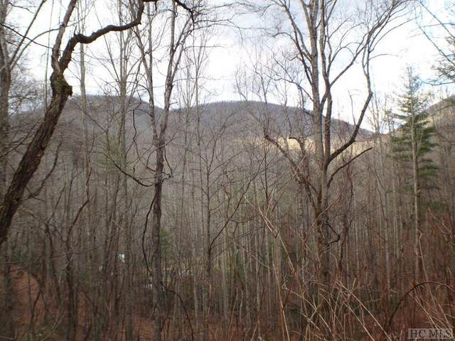 00 Daisy Lane, Highlands, NC 28741 (MLS #92856) :: Pat Allen Realty Group