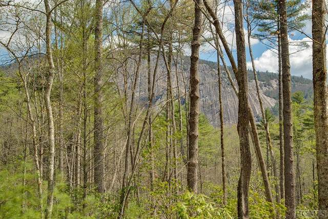 Lot 133 Lonesome Valley Rd, Sapphire, NC 28774 (MLS #92870) :: Berkshire Hathaway HomeServices Meadows Mountain Realty