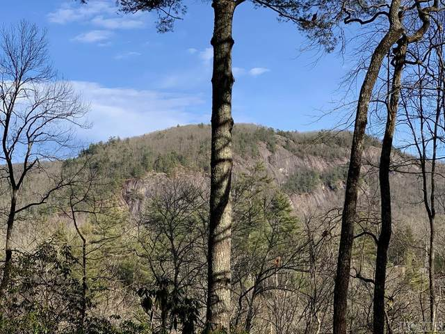 Lot 110 Lonesome Valley Rd, Sapphire, NC 28774 (MLS #92887) :: Berkshire Hathaway HomeServices Meadows Mountain Realty