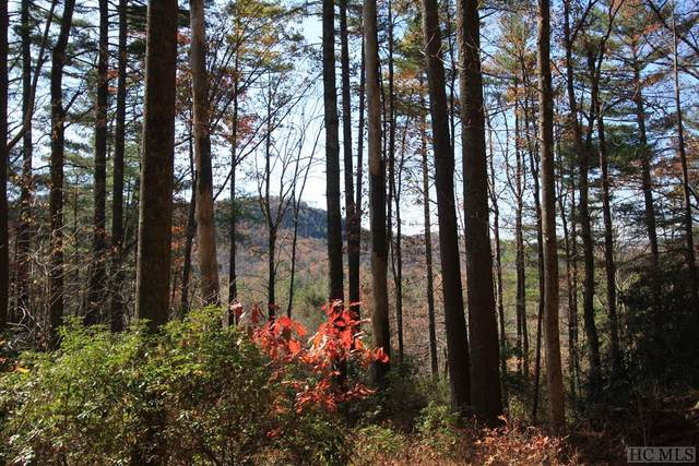 4 Pine Forest, Cashiers, NC 28774 (MLS #92907) :: Berkshire Hathaway HomeServices Meadows Mountain Realty