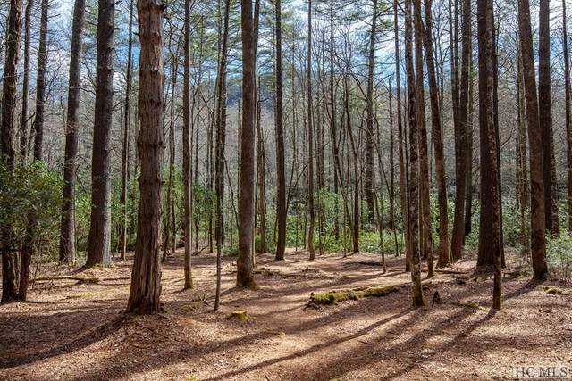 Lot 138 Lonesome Valley Rd, Sapphire, NC 28774 (MLS #92908) :: Berkshire Hathaway HomeServices Meadows Mountain Realty