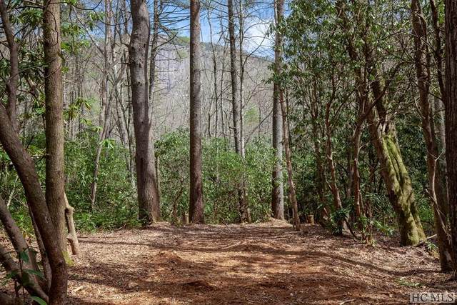 Lot 137 Lonesome Valley Rd, Sapphire, NC 28774 (MLS #92909) :: Berkshire Hathaway HomeServices Meadows Mountain Realty