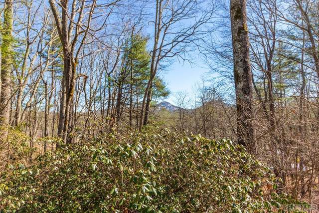 551 Us 64W, Cashiers, NC 28717 (MLS #92954) :: Pat Allen Realty Group