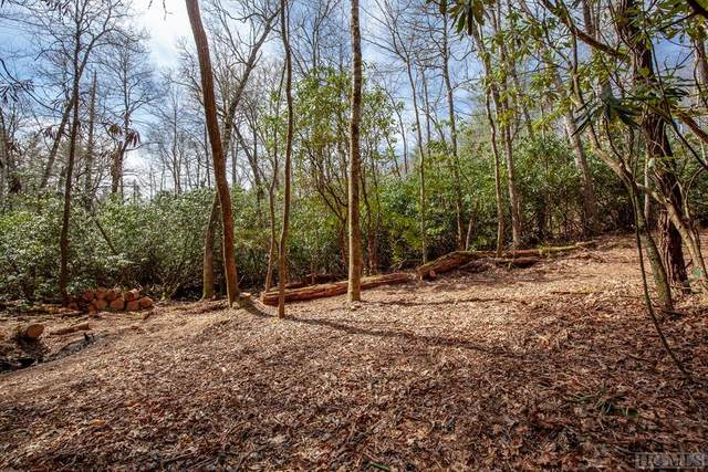 Lot 139 Lonesome Valley Rd, Sapphire, NC 28774 (MLS #92964) :: Pat Allen Realty Group