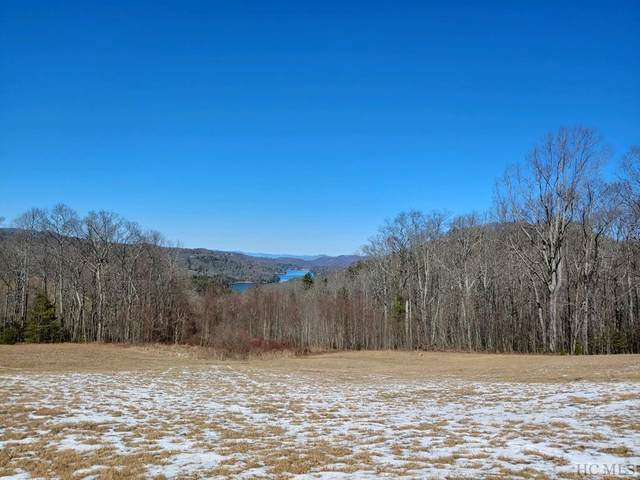 Lot 3 High Meadow Road, Glenville, NC 27836 (MLS #92988) :: Pat Allen Realty Group