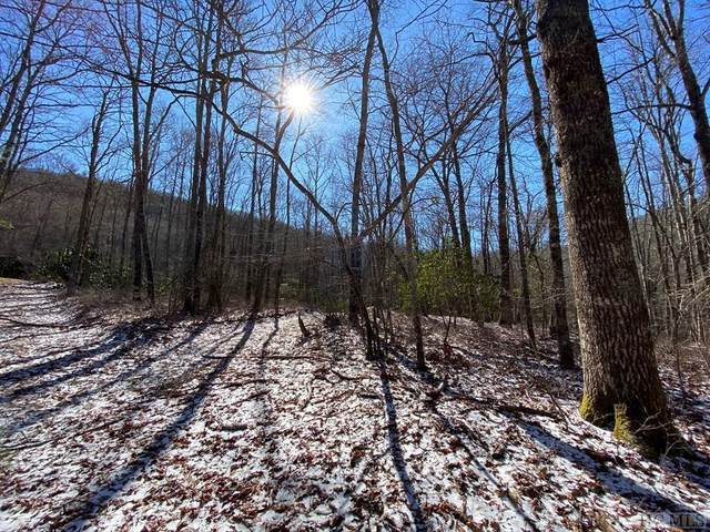 Lot 18 New Settler's Way, Glenville, NC 28736 (MLS #93055) :: Pat Allen Realty Group