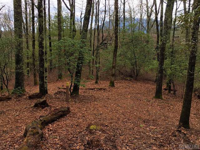 Lot E86 Hardy View Lane, Cashiers, NC 28717 (MLS #93063) :: Berkshire Hathaway HomeServices Meadows Mountain Realty
