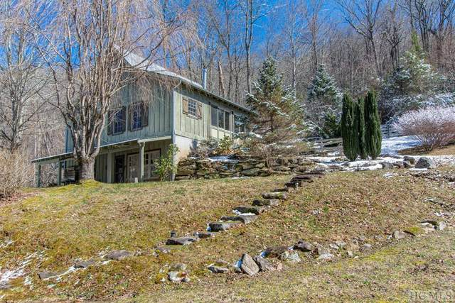 391 Natural Bridge Road, Scaly Mountain, NC 28775 (MLS #93074) :: Pat Allen Realty Group