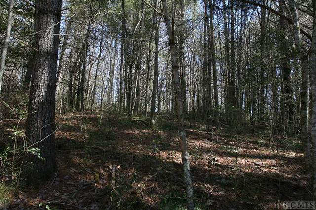 TBD Tarragon Drive, Cashiers, NC 28717 (MLS #93079) :: Berkshire Hathaway HomeServices Meadows Mountain Realty
