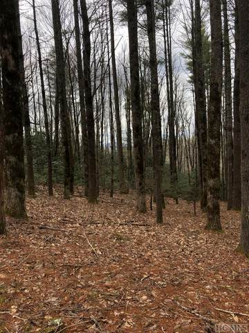 Lot B6 Courtside Cottage Way, Cashiers, NC 28717 (MLS #93159) :: Pat Allen Realty Group