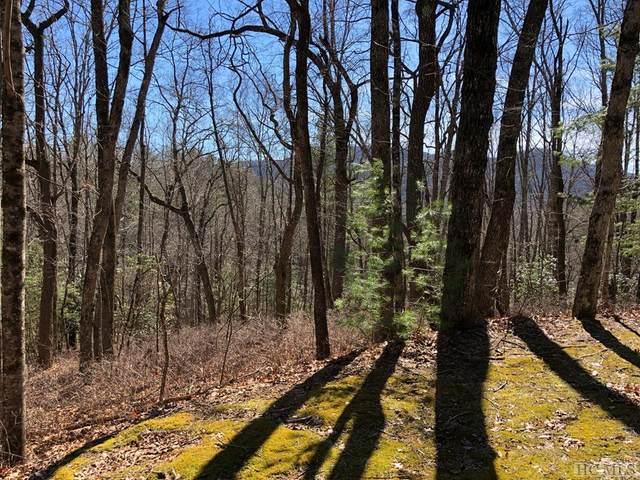 0 East Sugarbush Drive, Sky Valley, GA 30537 (MLS #93216) :: Berkshire Hathaway HomeServices Meadows Mountain Realty
