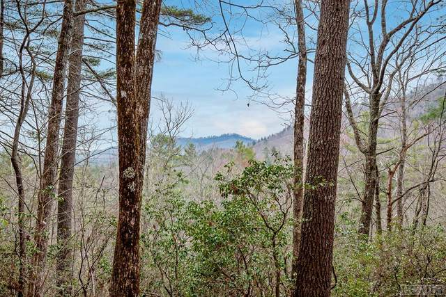 Lot 68 Lonesome Valley Rd, Sapphire, NC 28774 (MLS #93288) :: Pat Allen Realty Group