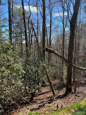 Lot 7 View Point Road, Highlands, NC 28741 (#93355) :: Exit Realty Vistas