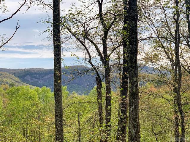LT 35 Ivorybill Way, Cashiers, NC 28717 (MLS #93378) :: Berkshire Hathaway HomeServices Meadows Mountain Realty
