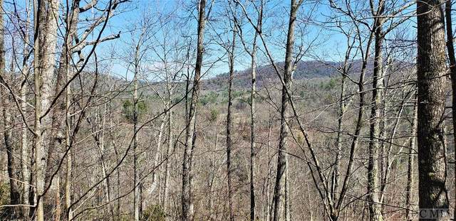 Lot 272 Audubon Trail, Cashiers, NC 28717 (MLS #93417) :: Berkshire Hathaway HomeServices Meadows Mountain Realty