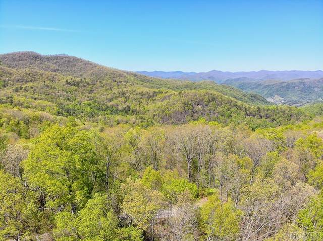 Lot 84 Waterdance Drive, Cullowhee, NC 28723 (MLS #93447) :: Berkshire Hathaway HomeServices Meadows Mountain Realty