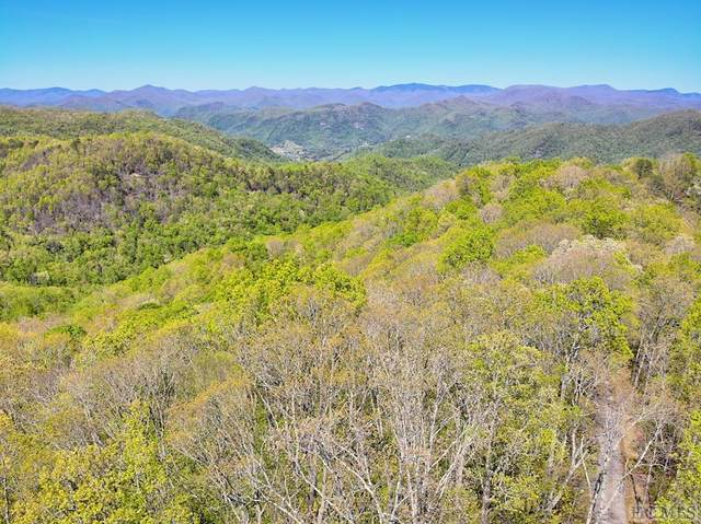 Lot 85 Waterdance Drive, Cullowhee, NC 28723 (MLS #93450) :: Berkshire Hathaway HomeServices Meadows Mountain Realty