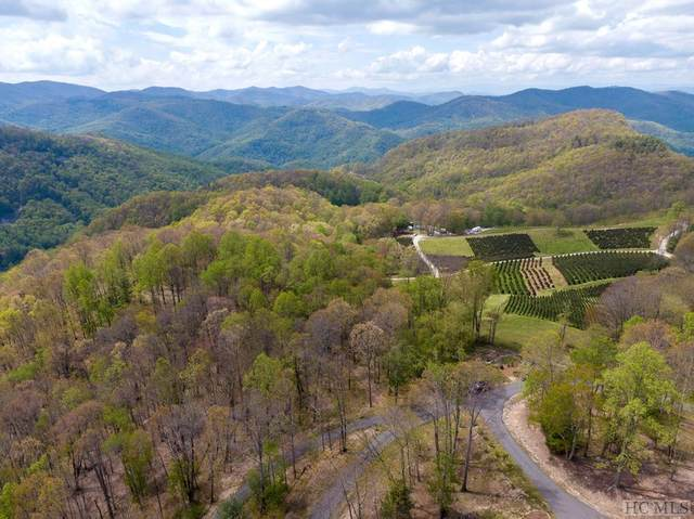 Lot 20 Chestnut Path, Glenville, NC 28736 (MLS #93505) :: Berkshire Hathaway HomeServices Meadows Mountain Realty