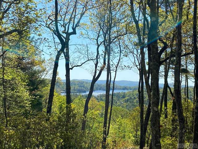 TRP-2 Cardinal Drive West, Lake Toxaway, NC 28747 (MLS #93608) :: Berkshire Hathaway HomeServices Meadows Mountain Realty