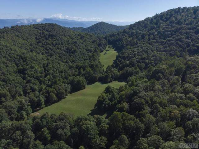00 Wachachau Tower Road, Out Of Area, NC 28771 (MLS #93624) :: Pat Allen Realty Group