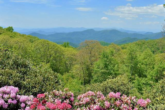 1270 Catspaw Road, Cullowhee, NC 28723 (MLS #93670) :: Pat Allen Realty Group