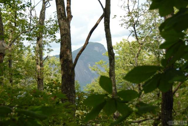 TBD Sagee Woods Drive, Highlands, NC 28741 (MLS #93707) :: Pat Allen Realty Group