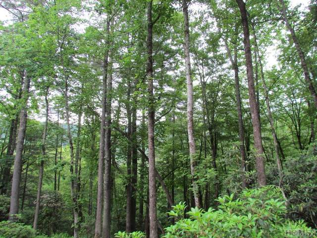 Lot 53 Rocky Top Drive, Cashiers, NC 28717 (MLS #93708) :: Pat Allen Realty Group