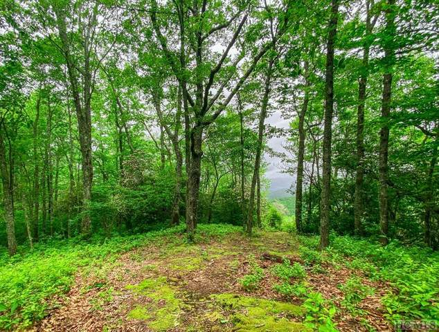 6B Trailhead Way, Glenville, NC 28736 (MLS #93729) :: Berkshire Hathaway HomeServices Meadows Mountain Realty