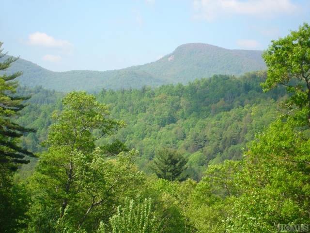 Lot 1 Trillium Ridge Road, Cullowhee, NC 28723 (MLS #93735) :: Berkshire Hathaway HomeServices Meadows Mountain Realty