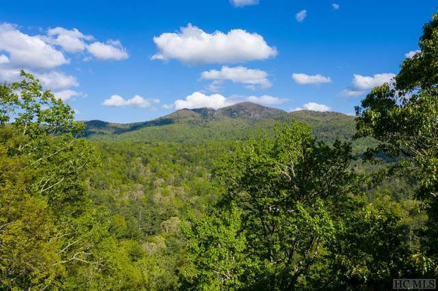 000 Holly Berry Lane, Cashiers, NC 28717 (MLS #93758) :: Berkshire Hathaway HomeServices Meadows Mountain Realty