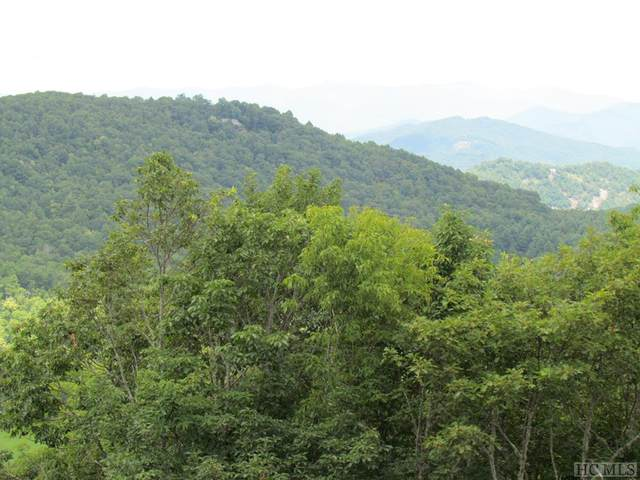 NONE Buggy Barn Road, Cullowhee, NC 28723 (MLS #93775) :: Pat Allen Realty Group