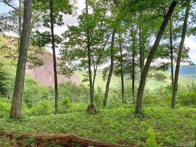 Lot 12 Double Knob Trail, Glenville, NC 28736 (MLS #93801) :: Berkshire Hathaway HomeServices Meadows Mountain Realty