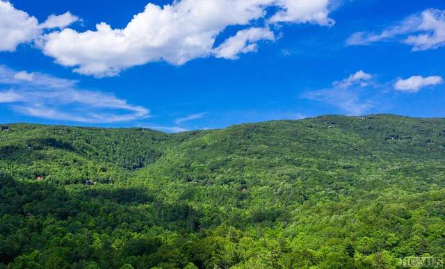 111 Narrows Road, Sapphire, NC 28774 (MLS #93859) :: Berkshire Hathaway HomeServices Meadows Mountain Realty