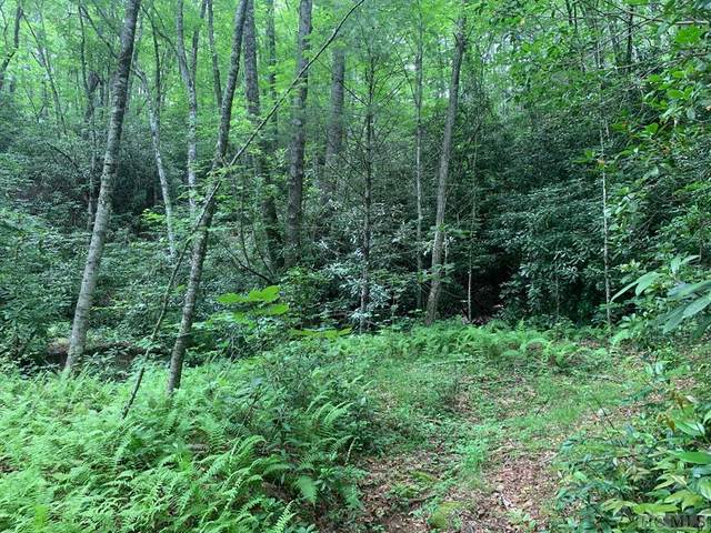 Lot 4 Shirley Pressley Road, Glenville, NC 28736 (MLS #93883) :: Berkshire Hathaway HomeServices Meadows Mountain Realty