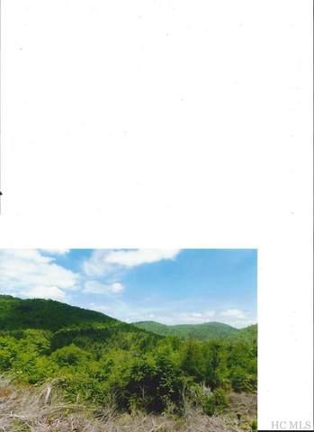 0 Turtle Pond Road, Highlands, NC 28741 (MLS #93890) :: Pat Allen Realty Group