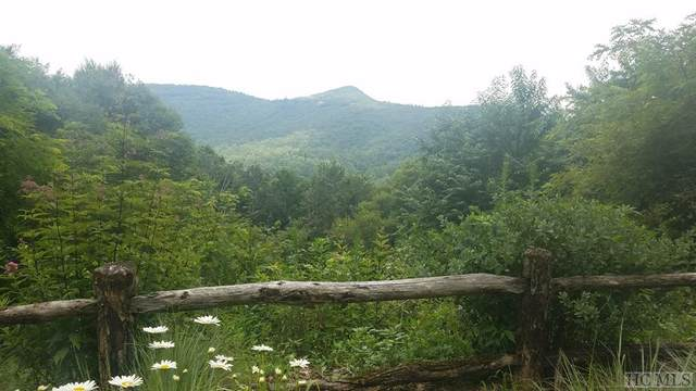 Lot E153 North High Mountain Drive, Cashiers, NC 28717 (MLS #93927) :: Pat Allen Realty Group