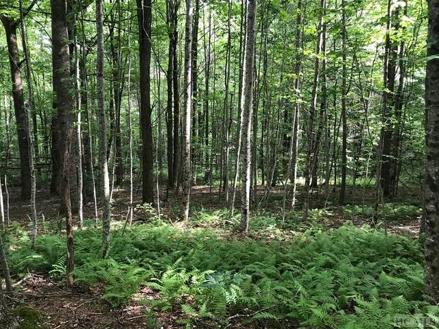 Lot 6 Forestland Rd., Cashiers, NC 28717 (MLS #93942) :: Pat Allen Realty Group