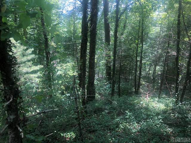 Lot N-1 Chimney Top Tr., Cashiers, NC 28717 (MLS #94033) :: Berkshire Hathaway HomeServices Meadows Mountain Realty