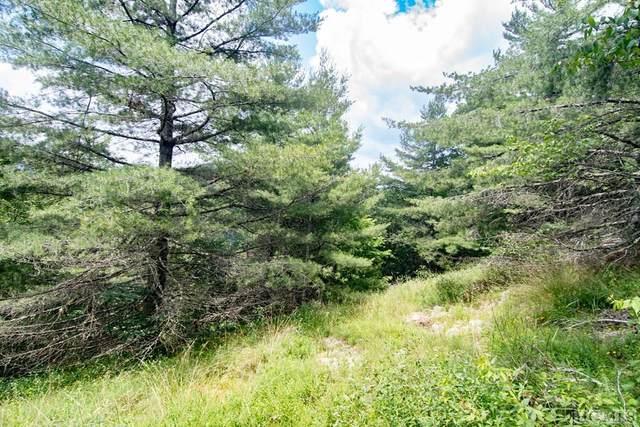 Lot 15 Cedar Creek Cliffs, Glenville, NC 23736 (MLS #94087) :: Pat Allen Realty Group