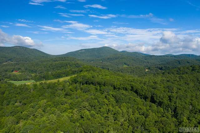 1297 High Mountain Dr, Cashiers, NC 28717 (MLS #94123) :: Pat Allen Realty Group