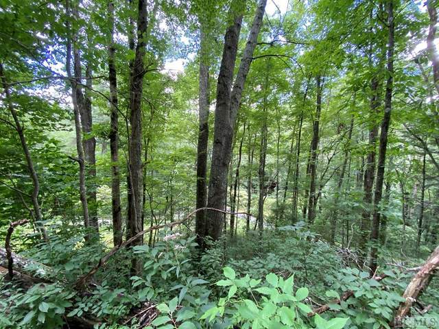 Lot 1 Glenshore Drive, Cullowhee, NC 28723 (MLS #94182) :: Pat Allen Realty Group