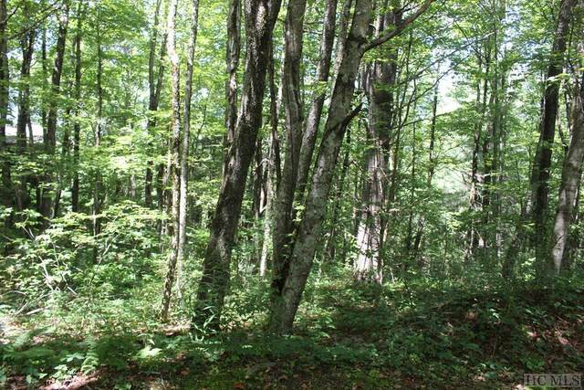 0 Rocky Knob Road, Scaly Mountain, NC 28775 (MLS #94295) :: Pat Allen Realty Group