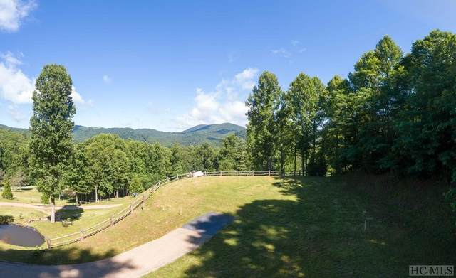 166 High Pocket Dr, Cullowhee, NC 28723 (MLS #94386) :: Berkshire Hathaway HomeServices Meadows Mountain Realty