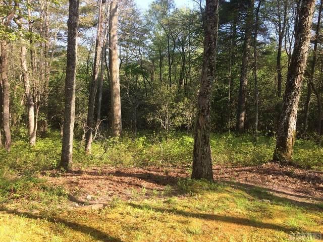 VH5 Owl Gap Road, Highlands, NC 28741 (MLS #94454) :: Pat Allen Realty Group