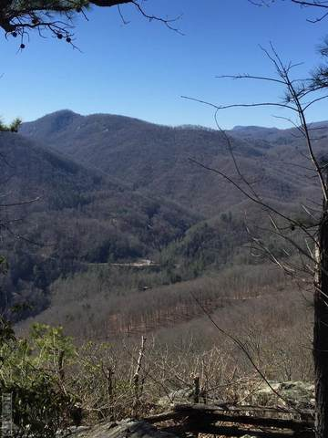 Lot 91 Waterdance Drive, Cullowhee, NC 28723 (MLS #94491) :: Berkshire Hathaway HomeServices Meadows Mountain Realty
