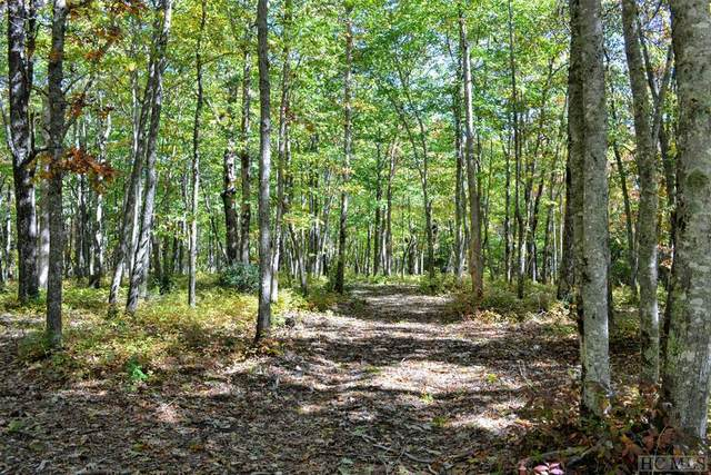Lot 50a Maidenhaire Lane, Sapphire, NC 28774 (MLS #94505) :: Berkshire Hathaway HomeServices Meadows Mountain Realty