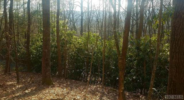 Lot 65 Black Oak Drive, Sapphire, NC 28774 (MLS #94527) :: Pat Allen Realty Group